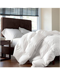 CANNON COMFORTER KING PLAIN