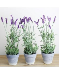 Artificial Lavender Plant In Pot