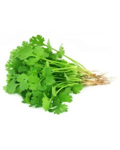 FRESH CORIANDER 1PACKET (50g)