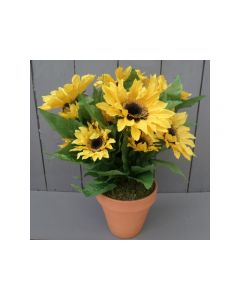 Artificial Sunflowers in Terracotta Pot