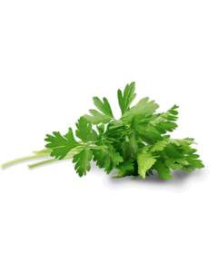 FRESH PARSLEY 1PACKET (50g)